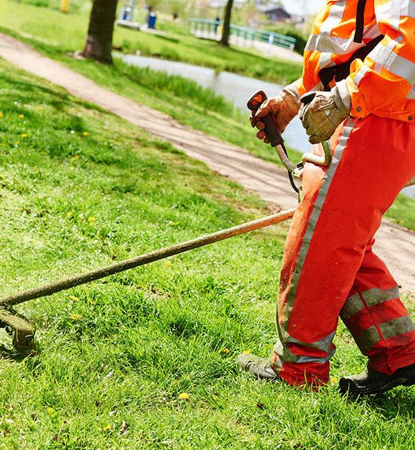 manutenzione aree verdi milano